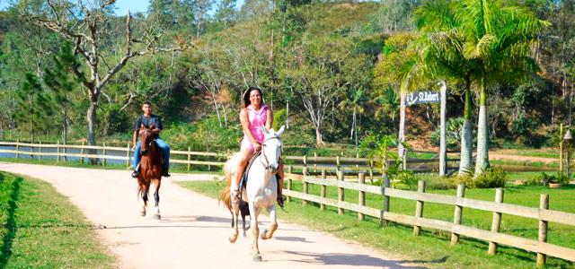 Passeio a cavalo no St. Robert