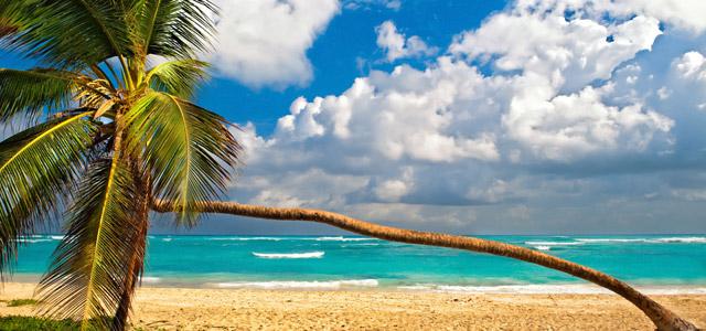 Pacotes de viagens internacionais - Punta Cana