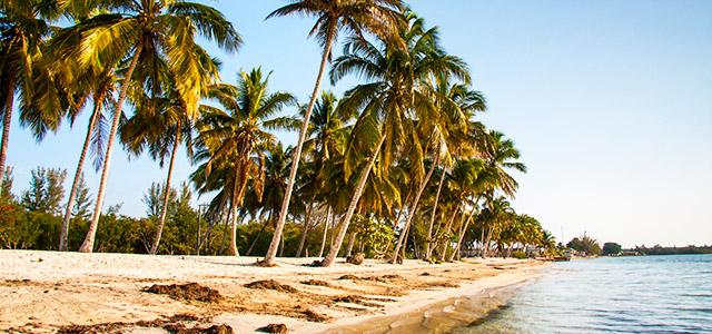 Cuba: Playa Larga.