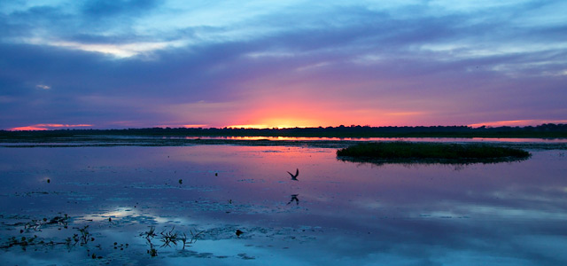 Pantanal para viajar sozinho