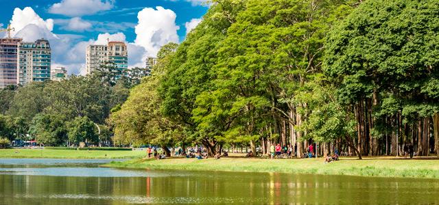 Ibirapuera - Primavera 2015