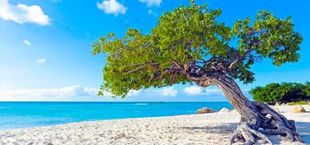Pacote para Aruba: 6 noites All-Inclusive no paraíso!