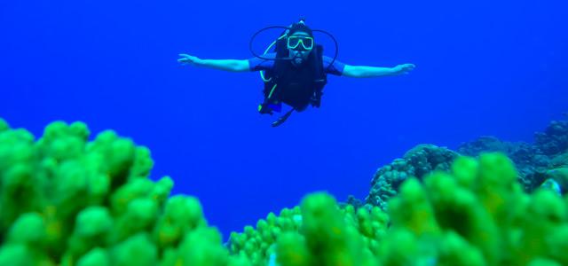 Curaçao - Mergulho