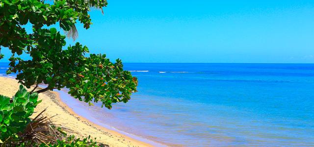 praia-do-forte-zarpo-magazine
