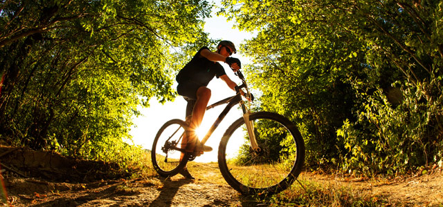 mountain-bike-zarpo-magazine