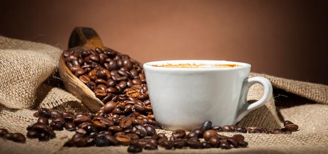 cafe-zarpo-magazine
