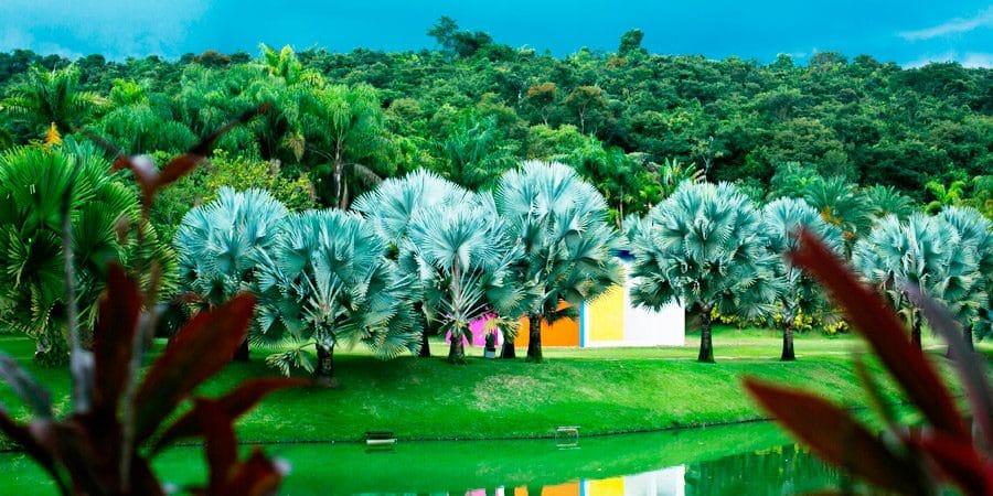 Inhotim: O museu ao ar livre da América Latina