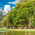 Parque do Ibirapuera: Entre os 10 melhores parques do país