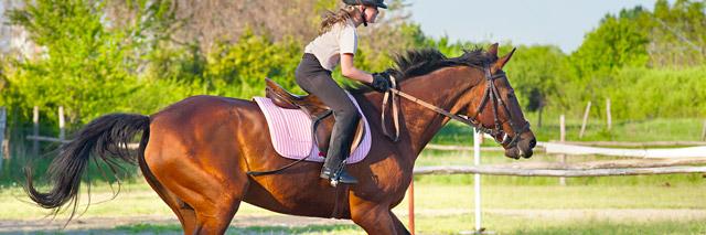 Passeio a cavalo – Águas de Lindóia