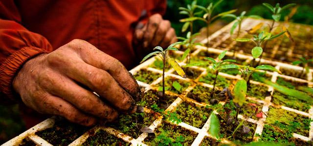 Sustentabilidade: a gente vê por aqui!