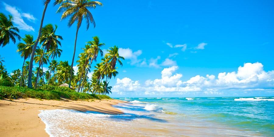 Top 5: Praia, sol e axé… Os melhores resorts na Bahia!