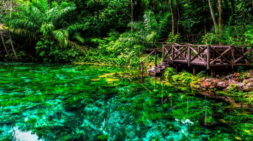 Trecho do Rio Sucuri na cidade de Bonito