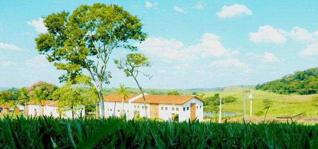 A Serra da Bocaina é uma das maiores áreas de preservação ecológica do país. Durante o inverno no Brasil, não deixe de visitar o parque responsável pela sua proteção