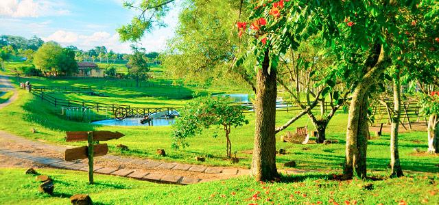 O verde reina nessa cidade! Venha conhecer um autêntico hotel fazenda em Brotas