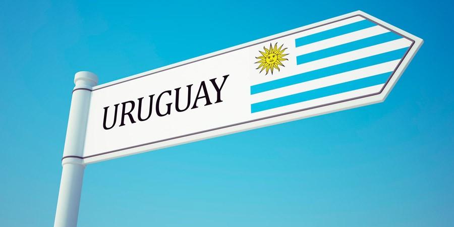 Dois destinos perfeitos em uma viagem ao Uruguai!