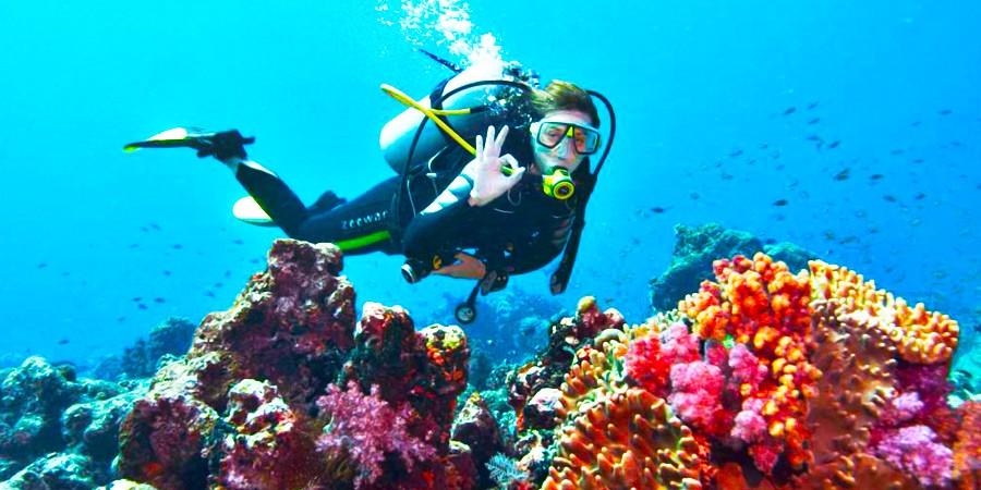 La Isla Eco Resort: A experiência All-Inclusive mais inesquecível da Bahia!