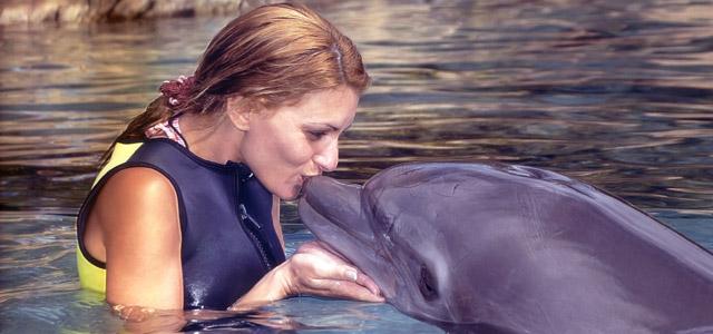 Pacotes de viagens internacionais - Curaçao Dolphins Academy