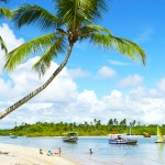 Desbrave os Segredos da Península de Maraú