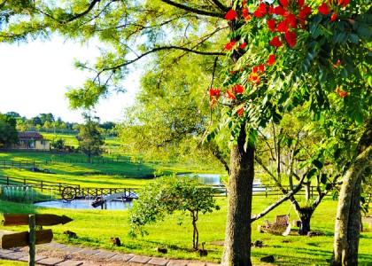Hotel Fazenda no Brasil? Confira os melhores!