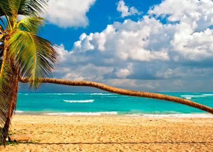 Ir para a República Dominicana? Já para Punta Cana!