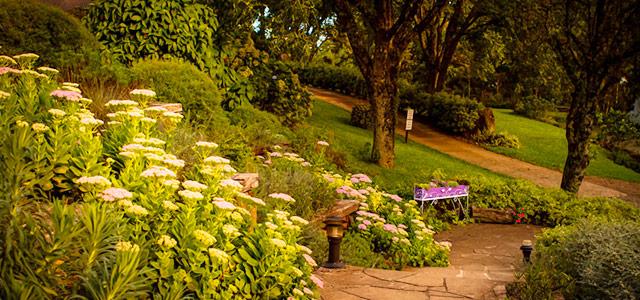 Le Jardin Parque de Lavandas - Passeios em Gramado