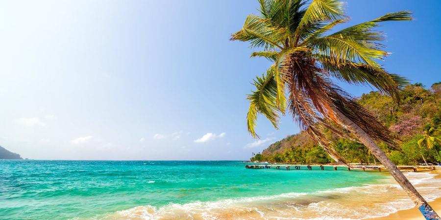 Caribe + Miami = Cidade do Panamá