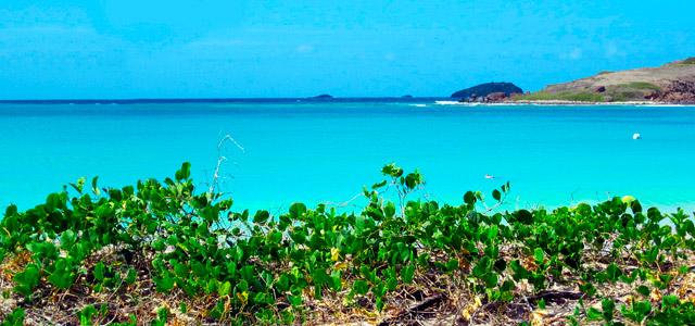 Conheça a Playa Tortugas no Pacote Cancun