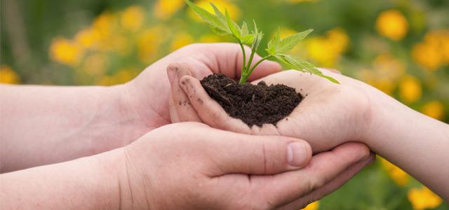 TAP e sustentabilidade tem tudo a ver!