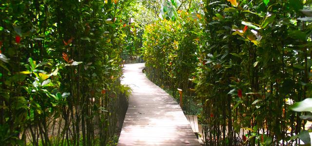 Os jardins do Villa Manakás transmitem paz!