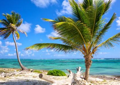 Uma joia chamada Caribe!