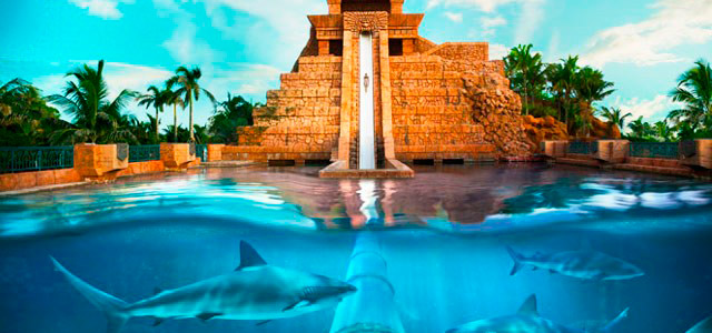 Atlantis Royal Towers - Caribe