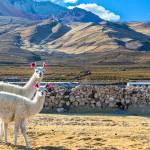 O Peru muito além de Machu Picchu