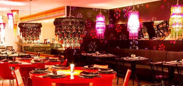 Restaurante Gatos de Rua - Restaurantes em Porto de Galinhas