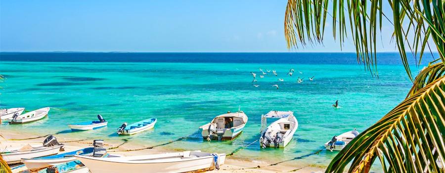 As 5 mais belas ilhas do Caribe Venezuelano