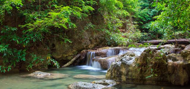 Cachoeira - Passeios em Ilhabela