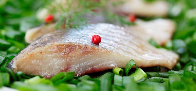 Gastronomia de primeira nos Restaurantes em Floripa