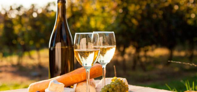 Visite as vinícolas famosas de Santiago