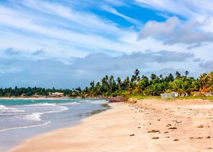 Um mergulho nas praias de Alagoas