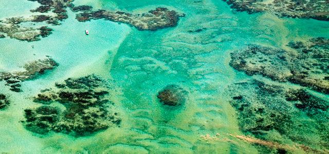Maragogi - Praias de Alagoas