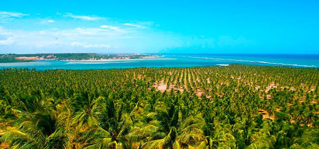 Praia de São Miguel -  Iloa Resort