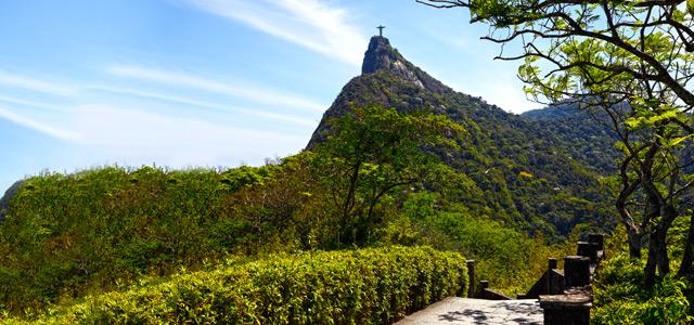 Floresta da Tijuca - Primavera 2015
