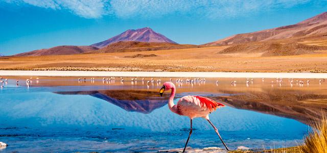 Patagônia Chilena - Deserto do Atacama