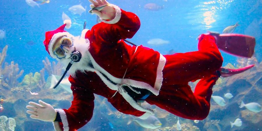 Dicas de viagens para o seu Natal 2015 ser memorável!