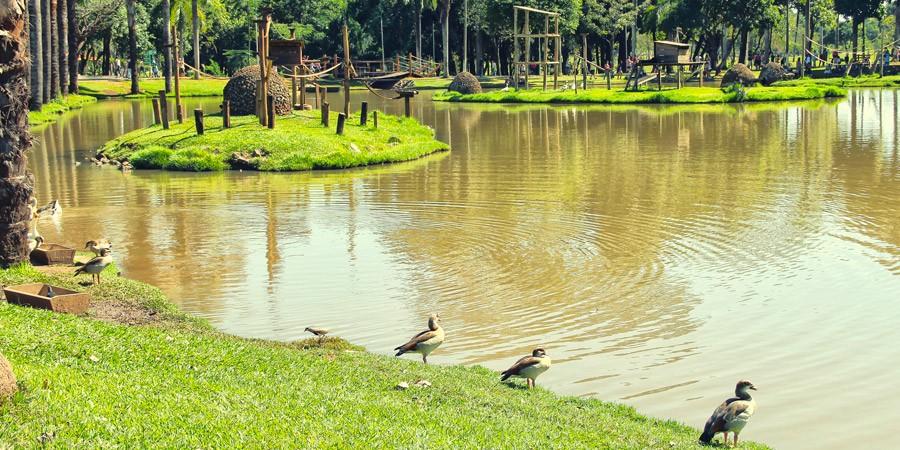 Venha sentir o gosto da verde Goiânia!