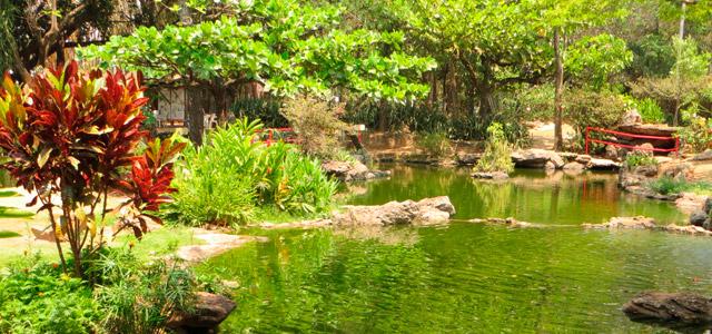 Caldas Novas -  Jardim Japonês