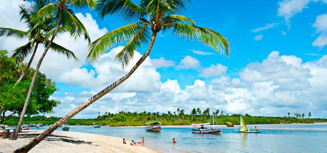 Que tal sua lua de mel na Bahia?