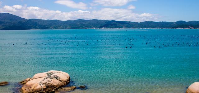 Praias em Santa Catarina - Zimbro