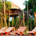 O pulsar da Selva Amazônica no Juma Amazon Logde