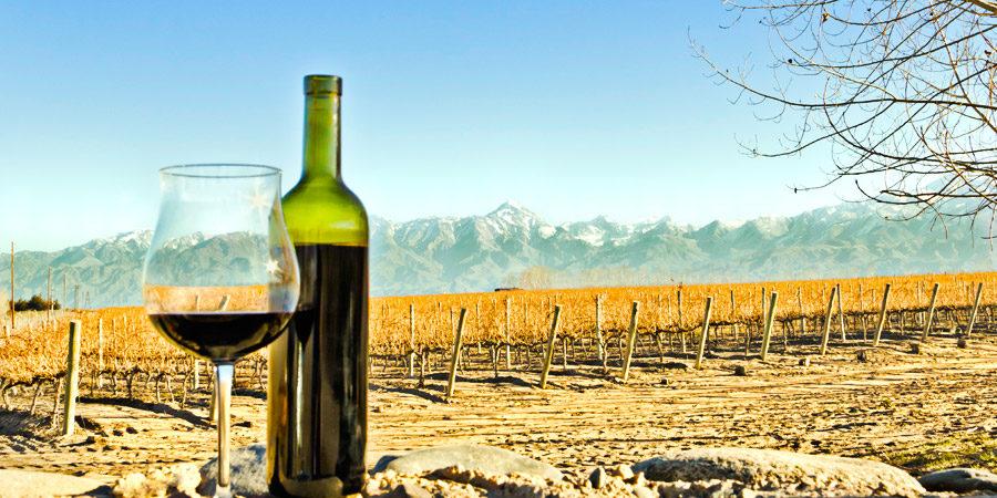 Resultado de imagem para mendoza vinhos