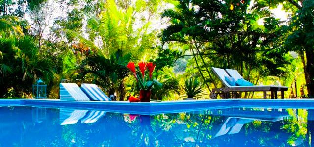 mata-nativa-piscina-zarpo-magazine